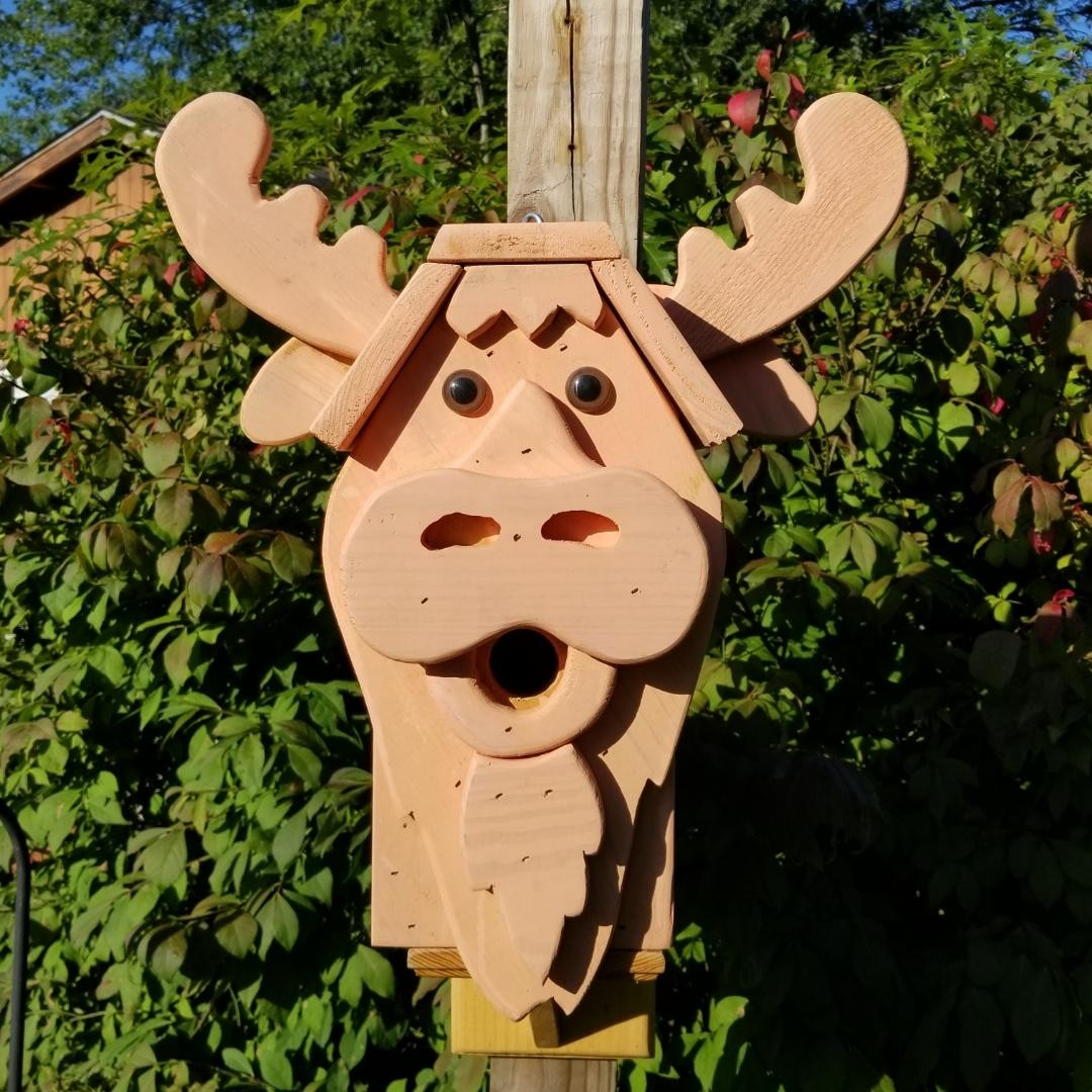 Stained Moose Birdhouse